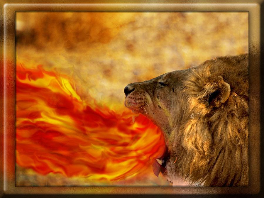 fire_breathing_lion_by_thematt711-d3kzbag