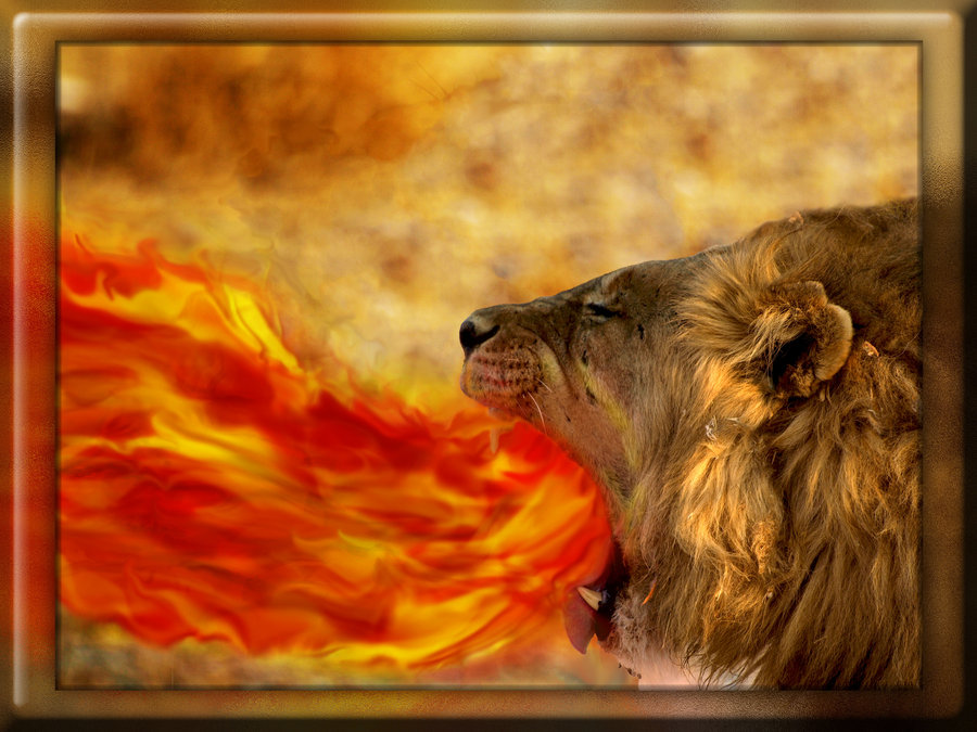 fire_breathing_lion_by_thematt711-d3kzbag